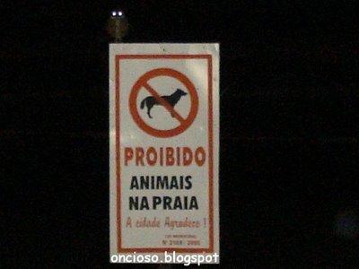 animalnapraia