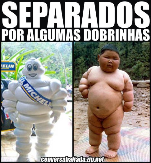 separados-michelin